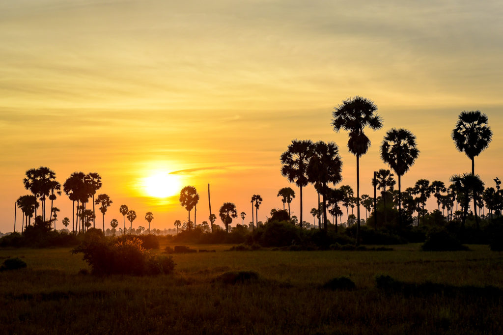 photo illustration coucher soleil vietnam