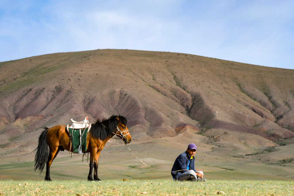 photo illustration mongolie cavalier cheval